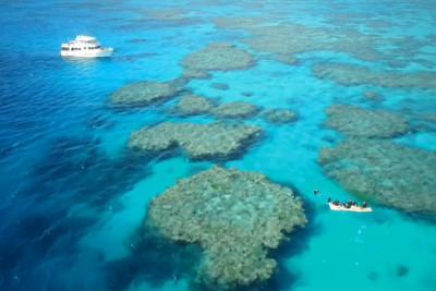 The Queensland Weekender on the 2010 700 Outer Reef AROONA
